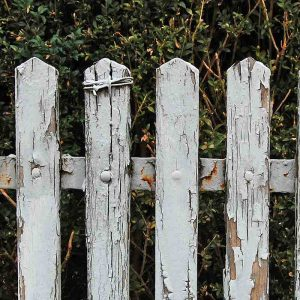 Replace the old rotting wood fence